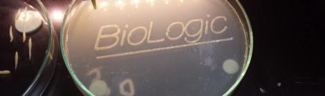 nexto BioLogic workshop report