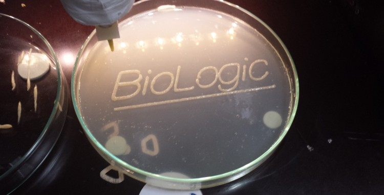 nexto BioLogic workshop report