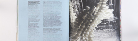 SELF-ORGANIZED SYSTEM_CITYVISION MAG_ISSUE N.4